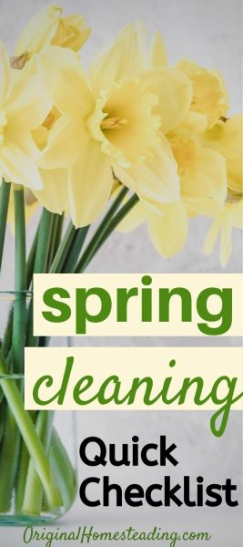 Easy Spring Cleaning List & Guide ~ To Get You Started promo image
