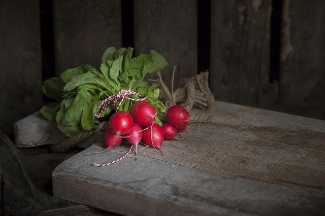 garden fresh radishes which are one of the fastest growing vegetables