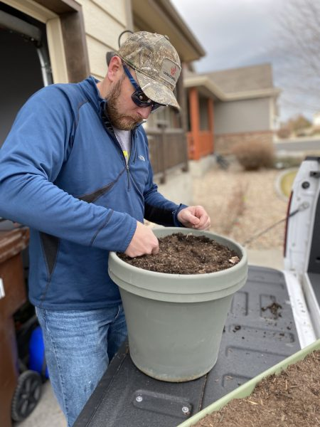 young man in blue pullover planting vegetable seeds in a container